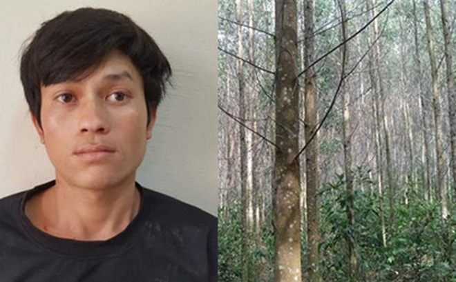 Khởi tố kẻ hiếp dâm bé gái 7 tuổi ở rừng keo