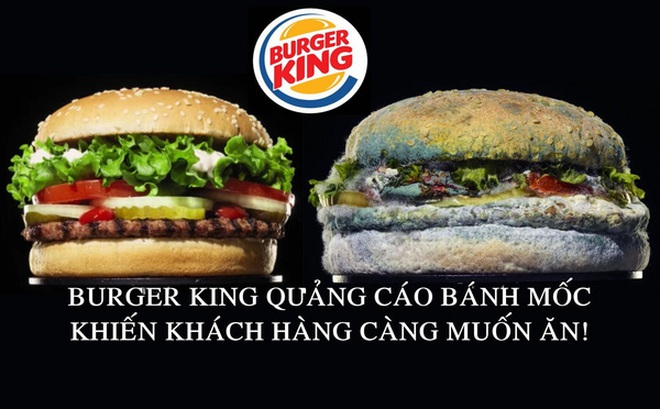 Chiêu trò marketing ngược đời của Burger King: Cho khách xem quá trình chiếc bánh hamburger phân huỷ đến mốc meo
