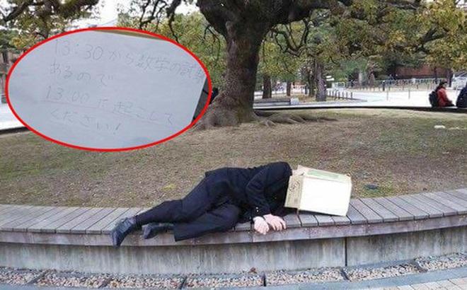 Ngủ giữa công viên và ghi lên bìa các-tông nhờ người qua đường 13h đánh thức, nam sinh lỡ việc trọng đại mà ai cũng phì cười