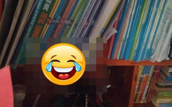 Soạn sách vở để đi học lại vào sáng nay, nữ sinh THPT tá hỏa vì vị khách không mời trên giá sách