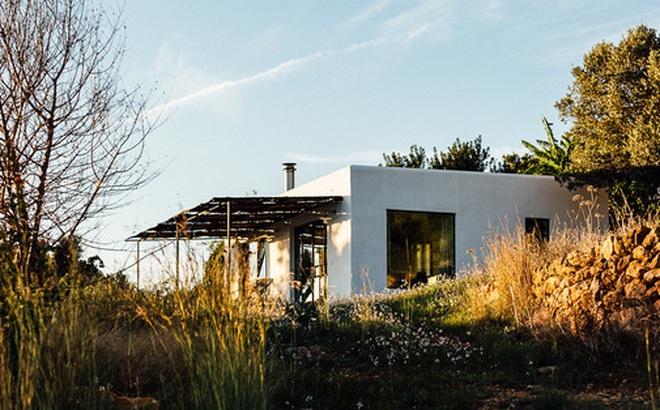 Căn nhà cấp 4 tạo ấn tượng đặc biệt nhờ kết hợp giữa kiến trúc hiện đại với thiên nhiên hoang sơ