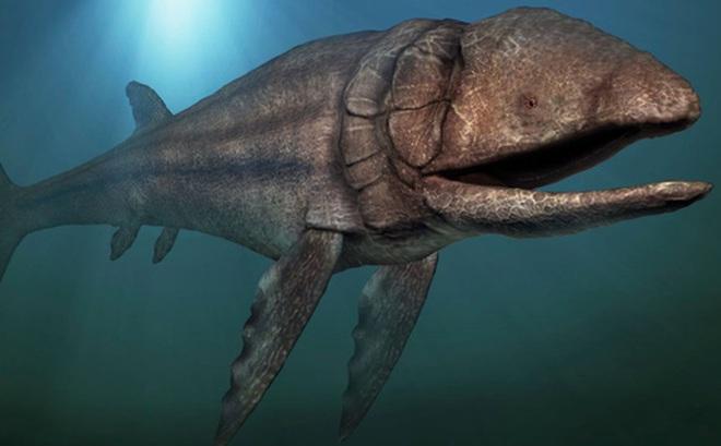 """Leedsichthys: """"Máy hút bụi"""" của biển cả Kỷ Jura từng bị hiểu nhầm là khủng long"""