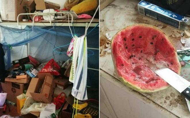 Thảm cảnh bạn cùng phòng ở bẩn đã lên một level mới, dân tình khuyên nên ra bãi rác luôn cho đỡ tốn tiền thuê phòng