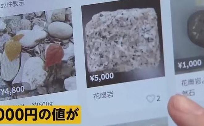 """Tranh cướp đá granit ở Nhật, tụ tập ăn lá hẹ ở Nga để """"phòng dịch Corona"""": Đừng để tư duy số đông tác động lý trí, đẩy bạn vào """"cửa tử"""""""