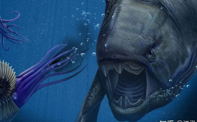 "Loài cá Dunkleosteus: ""Kẻ hủy diệt"" của kỷ Devon"