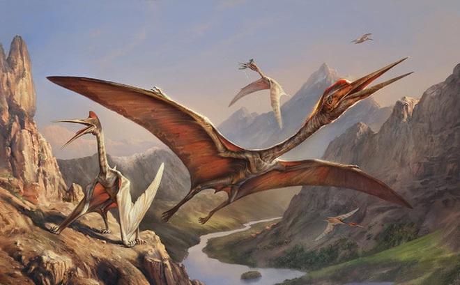 Thằn lằn bay Quetzalcoatlus – Sinh vật khiến khủng long T-rex phải khiếp sợ