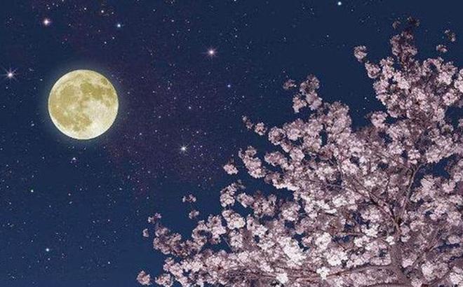 Chọn ánh trăng đẹp nhất để bạn biết được rốt cuộc mình là người như thế nào, luôn hoài niệm về quá khứ hay biết đầu tư cho tương lai
