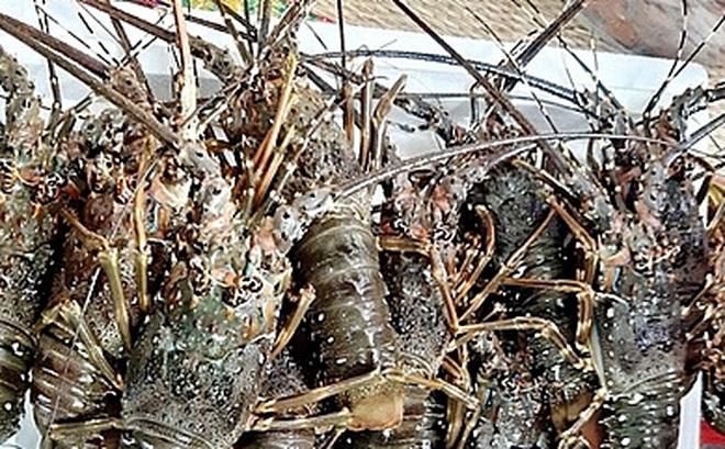 Kỳ vọng cho mặt hàng hải sản sau chuỗi ngày giảm giá mạnh