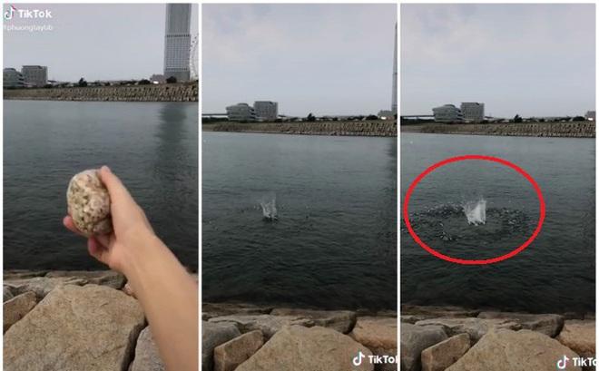 Đi biển mà không dám tắm, cô gái lấy hòn đá chọi xuống thì xuất hiện cảnh tượng bất ngờ, ai nhìn cũng xuýt xoa
