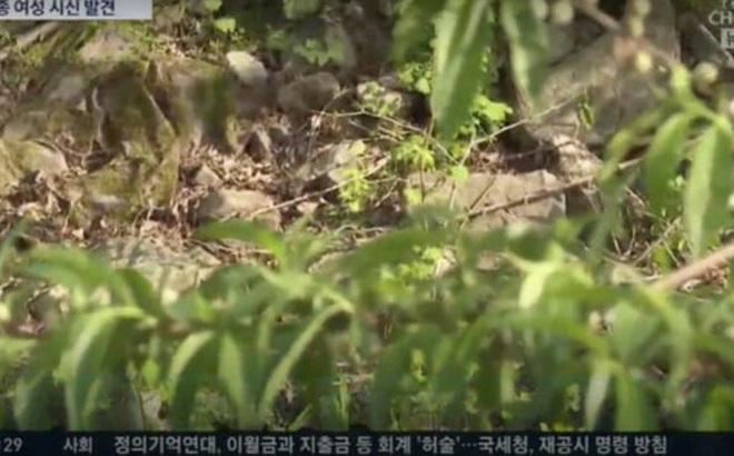 Hàn Quốc: Phát hiện thi thể người phụ nữ mất tích gần 1 tháng, có dấu hiệu cho thấy nghi phạm là kẻ giết người hàng loạt