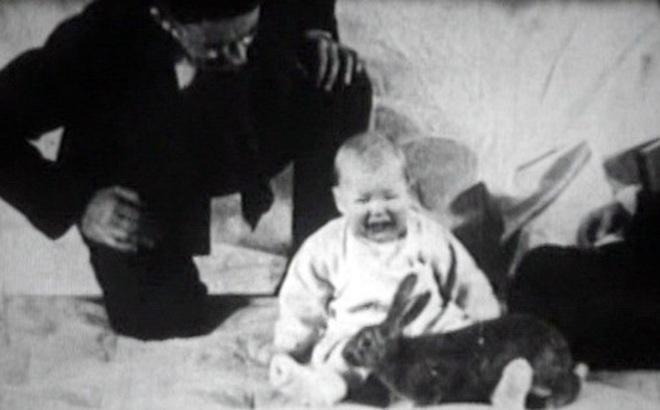 Albert bé nhỏ: Thí nghiệm tâm lý phi đạo đức thực hiện trên đứa trẻ 8 tháng tuổi gây ra nhiều tranh cãi nhất trong lịch sử nghiên cứu