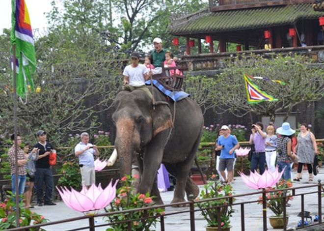 Nhiều khách thích thú cưỡi voi tham quan Đại Nội Huế dịp Festival