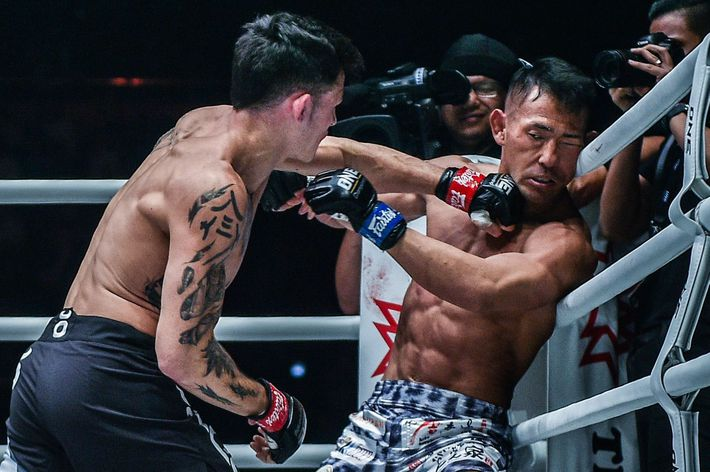 Võ sĩ gốc Việt giành đai vô địch thế giới bằng chiến thắng knock-out là ai? - Ảnh 2.