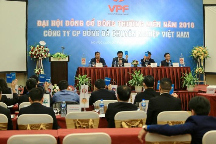 Vì sao VPF phục chức Phó Chủ tịch cho ông Trần Mạnh Hùng? - Ảnh 1.