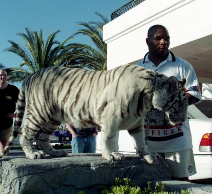 Thú chơi ngông thích nuôi hổ của Mike Tyson và giai thoại mất oan 6 tỷ đồng vì để vật nuôi ăn thịt người - Ảnh 2.