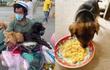 Người nuôi chú chó duy nhất sống sót trong vụ tiêu huỷ đàn chó ở Cà Mau: 'Chú nói có dịp sẽ lên thăm bé!'