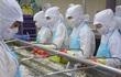 Chính phủ chủ trì hội nghị toàn quốc nhằm vực dậy sản xuất