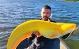 """Ngư dân choáng nặng vì câu được cá khổng lồ """"vàng như trái chuối"""" từ hồ nước"""