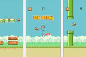 Nguyễn Hà Đông và game gây bão Flappy Bird