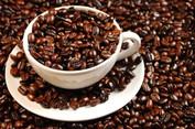 Cạnh tranh khốc liệt thị trường cà phê Việt