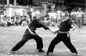 Những môn phái võ thuật nổi tiếng thế giới và Việt Nam