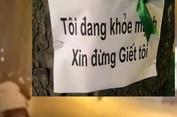 Hà Nội chặt 6.700 cây xanh, dư luận nổi sóng