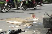 Thai phụ 7 tháng tử vong ở Hải Phòng