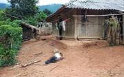 Trọng án 3 người chết ở Điện Biên: Mâu thuẫn từ chuyện ông làm cháu gái 15 tuổi mang thai?