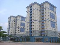 3 'đại gia' dùng 40 ha xây nhà ở xã hội