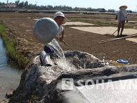 Thanh Hóa: Sét đánh trúng Thành nhà Hồ