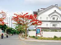 """Tin bất động sản 5/5 - 11/5: """"Bán biệt thự sát nhà Cường Đô la"""""""
