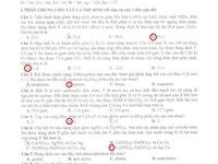 Đáp án đề thi môn Tiếng Anh khối D1 năm 2013 (cập nhật liên tục)