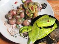 Đại gia xài 500 con cá Anh Vũ mỗi tháng để lấy may
