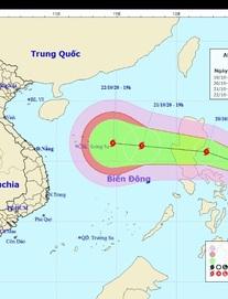 Thông tin mới nhất về bão số 8 giật cấp 14 đang hướng vào miền Trung