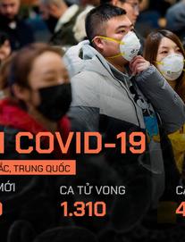 """Indonesia """"truy"""" đường đi của khách du lịch từ Vũ Hán, một người Nhật nhiễm Covid-19 tử vong"""