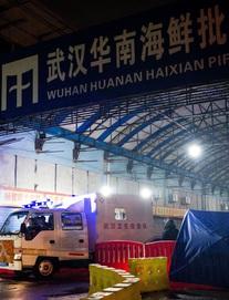 Nguồn gốc dịch COVID-19 có thể không phải từ chợ hải sản Hoa Nam, Vũ Hán
