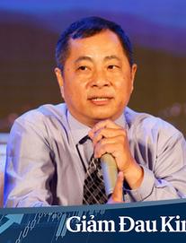 """TS Đinh Thế Hiển: """"Các khu đất quan trọng hoàn toàn có thể rơi vào tay công ty Trung Quốc theo cơ chế mua cổ phần"""""""
