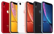Doanh nghiệp phân phối sản phẩm của Apple, Xiaomi thu bình quân hơn 31 tỷ đồng/ngày