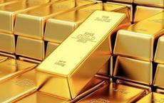 Giá vàng rơi thẳng đứng, tiếp tục xuống đáy mới
