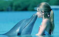 Sống thú vị như cá heo: Chơi được với cá mập; ở chung hồ 1 tháng 'nhớ mặt' 20 năm!