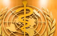 Tổ chức Y tế Thế giới (WHO) hoạt động như thế nào?