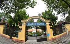 """Trường Marie Curie """"bất ngờ"""" với bảng giá 238 triệu đồng để cắt tỉa cây xanh"""