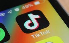TikTok vừa bị cấm, hàng loạt ứng dụng chia sẻ video của Ấn Độ ngay lập tức bùng nổ