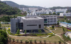 Báo Anh: Virus giống virus Corona đến 96,2% được gửi đến Viện Virus học Vũ Hán 7 năm trước