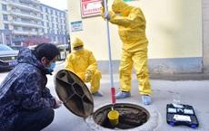 """Chuyên gia ĐH Oxford: SARS-Cov-2 đã """"ngủ đông"""" hàng thập kỷ, có thể không bắt nguồn từ Trung Quốc"""