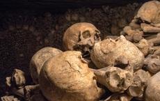 Khai quật mật thất niên đại 4.300 năm, thứ bên trong khiến nhà khảo cổ phải rùng rợn