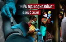 Miễn dịch cộng đồng không cần vaccine: Điều đáng lo ngại từ nghiên cứu ở khu ổ chuột Ấn Độ
