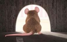 Mải miết tìm kiếm thứ vĩ đại nhất trên đời, chú chuột sửng sốt khi phát hiện ra kết quả: Ai cũng nên ngẫm!