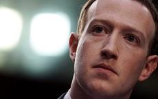 Mark Zuckerberg nói mình 'thực sự lo lắng' về lệnh cấm TikTok: Mèo khóc chuột?