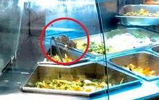 """Chuột bò """"lúc nhúc"""" trong quầy thức ăn tại Aeon Tân Phú TP Hồ Chí Minh"""